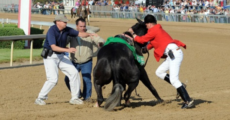 Eight Belles breaks down and euthanized. Photo Credit: Brian Bohannon / AP.