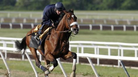 May 4, 2006. Barbaro works out prior in preparation of the Kentucky Derby.  By Jamie Squire / Getty Images.