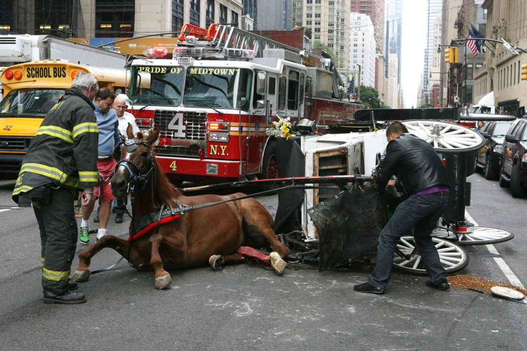 Carriage horse down and injured, midtown Manhattan. Unattributed image. Google search result.