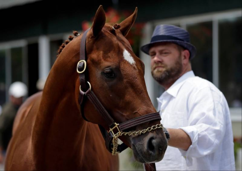2012 Kentucky Derby winner I'll Have Another, his trainer Doug O'Neill behind him. AP Photo.