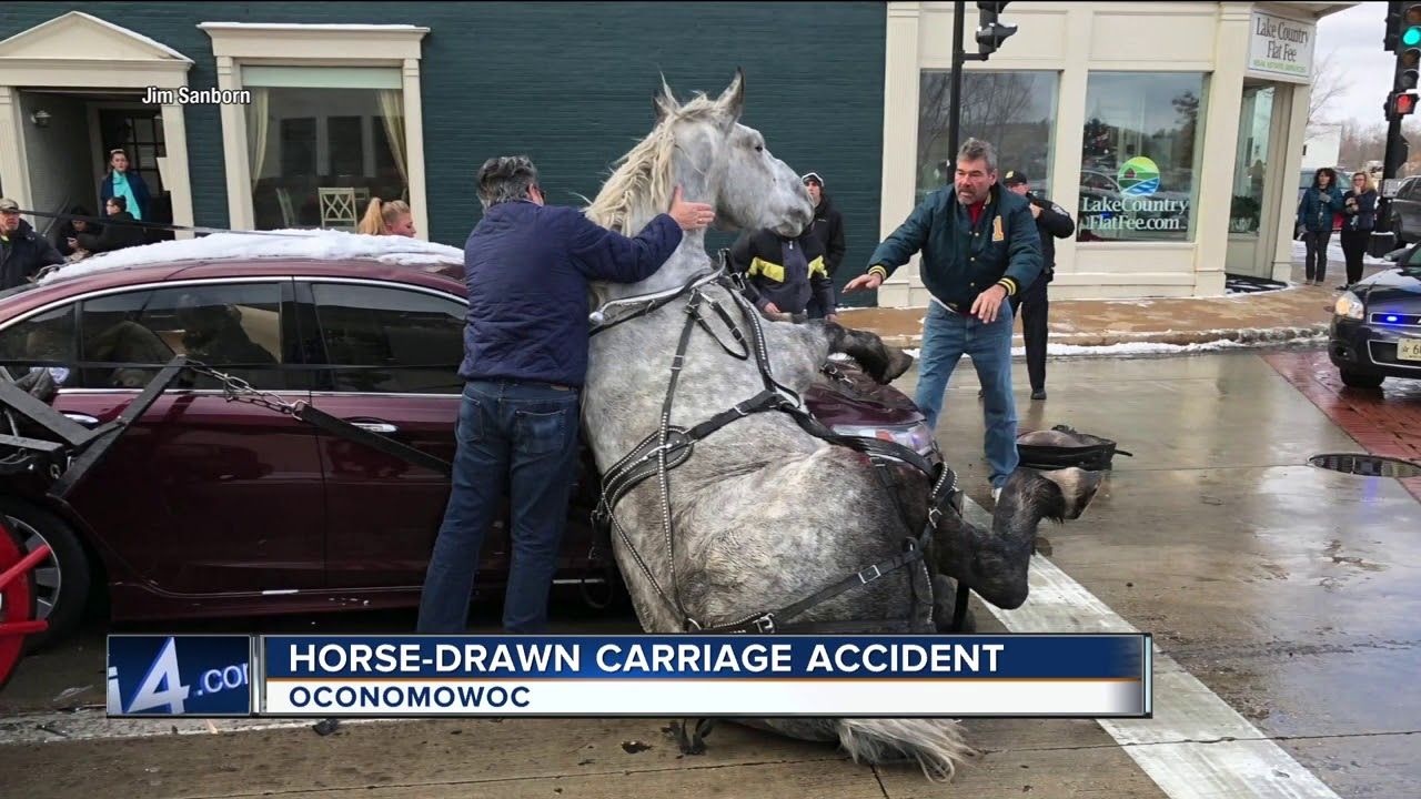 Car collides with carriage horse in Oconomowoc, Wisconsin. It is unknown if the horse survived.