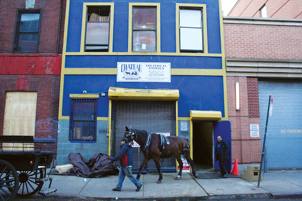 A stableman leads a horse outside Chateau Stables in Hell's Kitchen, one of only four traditional carriage stables left in New York City. Photo by Yannic Rack.