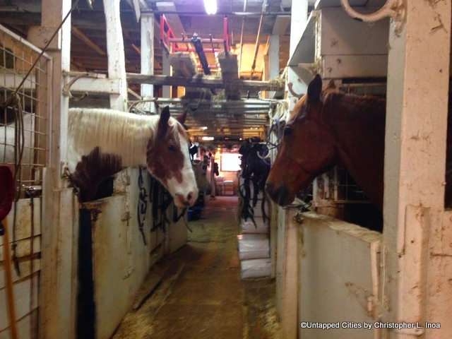Carriage Horses at Chateau Stables, New York. By Untapped.