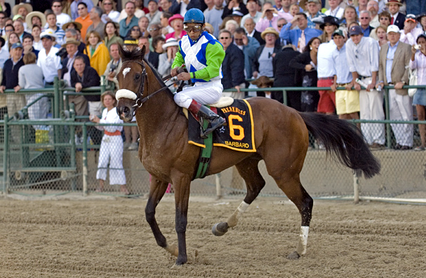 Prado finally gets control of Barbaro and stops him so he can dismount.