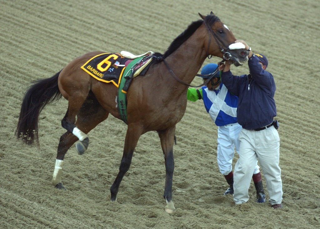 Prado is finally able to dismount. He tries to steady Barbaro with the help of a track worker.